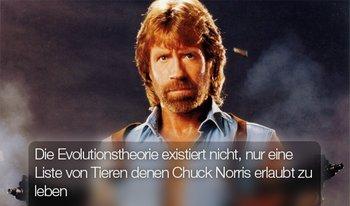 Niemand stirbt unter Chuck Norris guten Willen