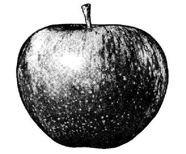 Apfel-Logo: Apple übernimmt Granny-Smith-Apfel der Beatles