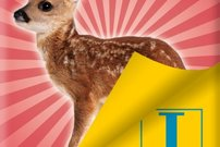 Übelsetzungen: Langenscheidt Bambi Goreng als kostenloses E-Book bei textunes