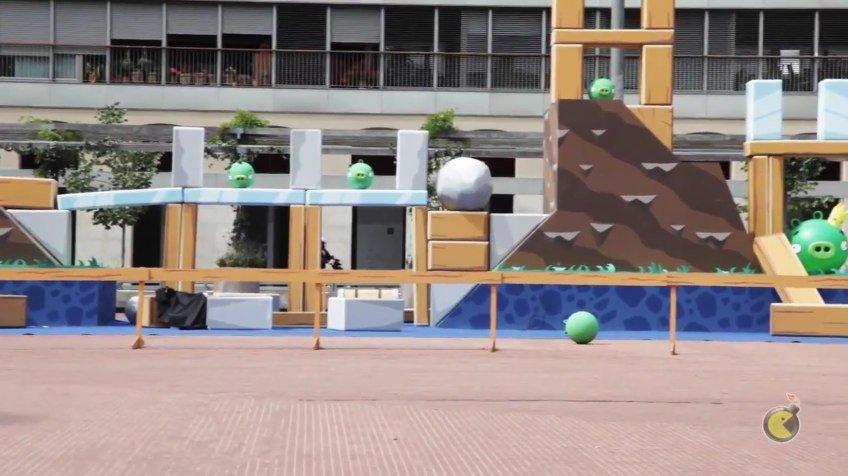 Video: Reales Angry Birds - überlebensgroß