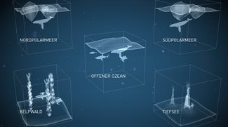 Tauch-Apps 3: Fischbestimmung mit iPhone/iPad