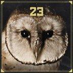 """Bushido &amp&#x3B; Sido: Clip zu """"So mach ich es"""" vom gemeinsamen Album """"23"""" [Video]"""