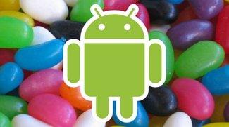 Kommen 5 Nexus-Geräte? 555 - Das ist die Zahl des Googles!