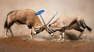 Galaxy Tab 10.1: Samsung gewinnt vor Gericht, nicht so cool wie Apple