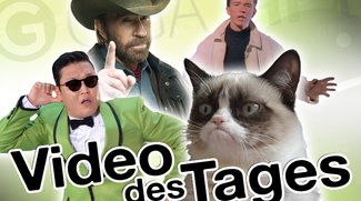 Video des Tages - Katze vs. Staubsauger