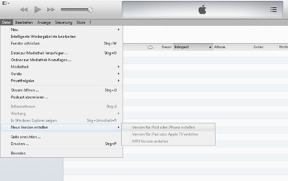 iTunes Videoformate Screenshot