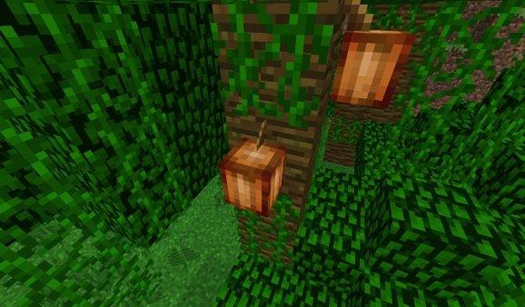Minecraft Kakaobohnen