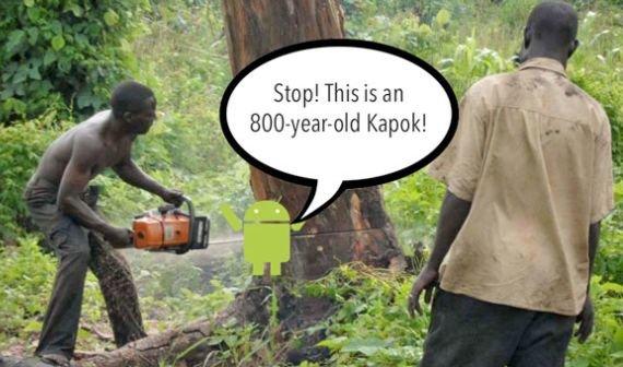 Wie Android Smartphones gegen illegale Regenwald-Abholzung schützen sollen