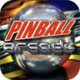 The Pinball Arcarde