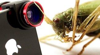 olloclip mit iPhone 5s: Testfotos des Objektivaufsatzes