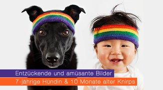 7-jährige Hündin macht 10 Monate alten Jungen glücklich