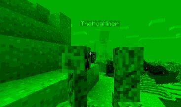 Minecraft 1.8: So sieht Minecraft aus der Sicht eines Creepers aus (Quelle: fr-minecraft)