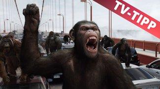 Planet der Affen: Prevolution im Stream online & im TV: Heute auf Sat.1