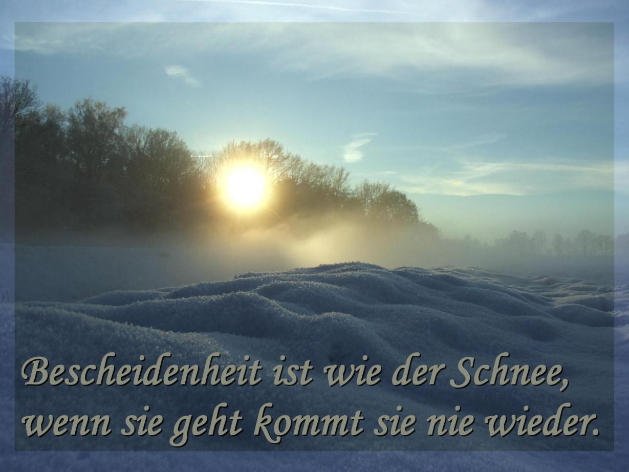 weisheiten-zitate: sprüche für whatsapp, facebook und co. – best