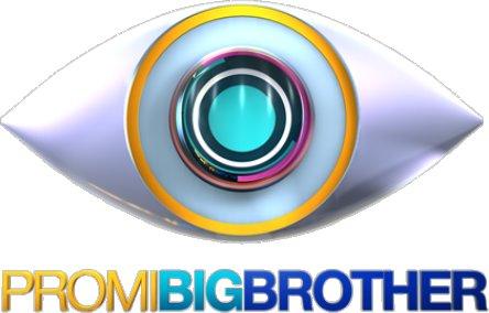 Logo der promi big brother staffel 2013