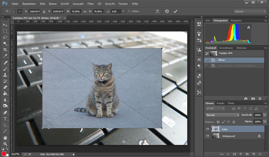 photoshop bild einf gen so geht s giga. Black Bedroom Furniture Sets. Home Design Ideas