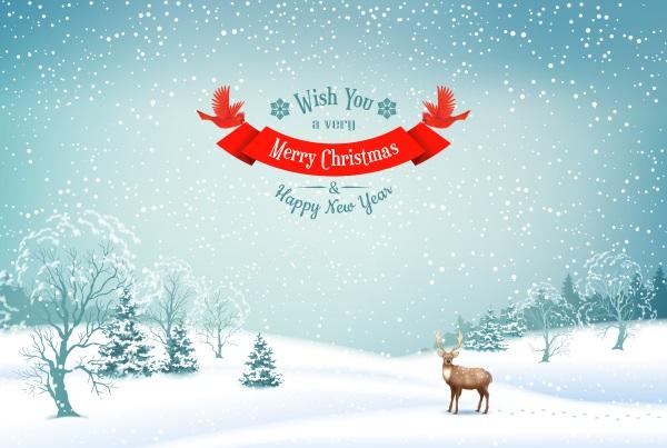weihnachtsfeier-einladung gestalten – lustige vorlagen und texte, Einladung