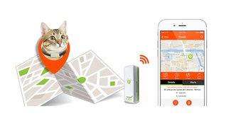 """""""Komm nach Hause, Minka. Fressi!"""" – Weenect Cats ist das erste Handy für Katzen"""