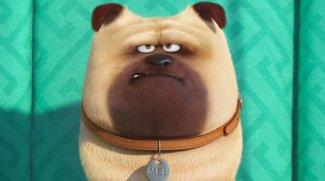 Animationsfilme 2016: Die Zeichentrick-Blockbuster des Jahres