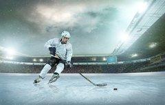 Halbfinale: Eishockey DEL...
