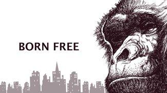Kong: Skull Island - Trailer, Bilder vom Set, Kinostart & Infos zum Film