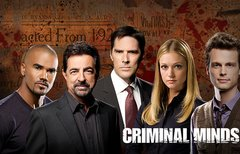 Criminal Minds Staffel 13:...