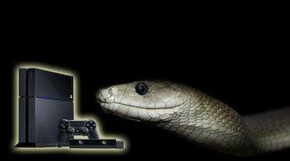 Solid Snake wörtlich genommen: Techniker fischt Schlange aus PlayStation 4