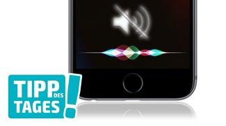 Tipp: Siri auf iPhone & iPad lautlos über Textbefehle steuern