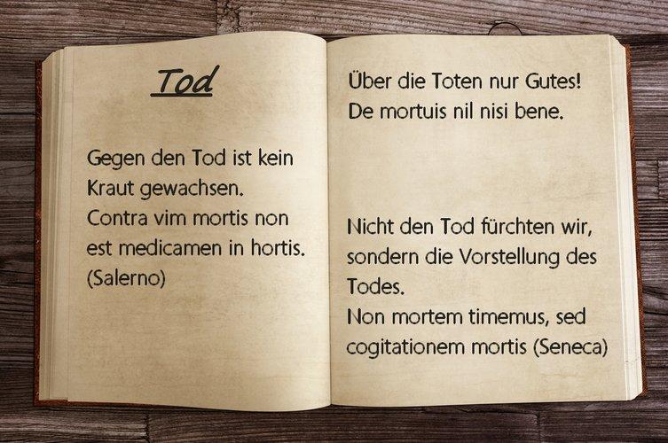 """lateinische sprichwörter: sprüche und zitate auf """"schlau"""" - bild 1"""