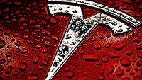 Held opferte seinen Tesla, um Unfall zu verhindern: Jetzt belohnt ihn Elon Musk
