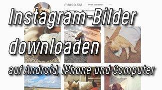 Instagram-Bilder downloaden – Windows, iPhone, Android