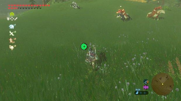 Zelda - Breath of the Wild: Pfeile farmen - unendlich Munition dank diesem Trick