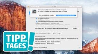 Apples Beta-Programm für iOS & macOS beenden, so gehts