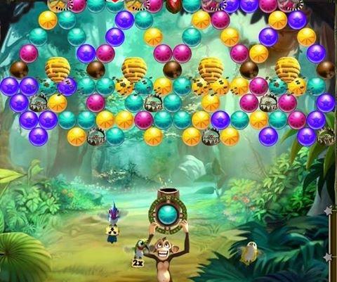 bubble-safari