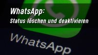 Den WhatsApp-Status löschen und deaktivieren