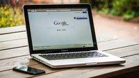 Wo können Möwen in Krefeld kostenlos Karussell fahren und mehr: Das sind die Google-Suchbegriffe 2017
