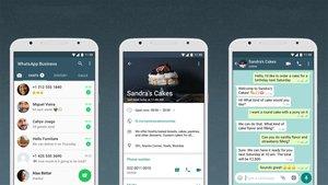 WhatsApp: Ab sofort gibt es zwei Apps – das steckt dahinter