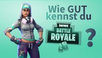 Quiz: Wie gut kennst du Fortnite: Battle Royale?
