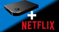 Netflix über Steam Link schauen – so geht's