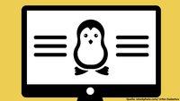 Steam: Windows-Spiele auf Linux mit Steam Play spielen (Beta)