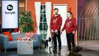 """Furryfit aus """"Die Höhle der Löwen"""" kaufen: Gesundheits-Tracker für den Hund"""