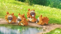 Pokémon GO: Bidiza wird als Gott gefeiert