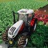 Landwirtschafts-Simulator 19: Ertrag erhöhen und Ernte verbessern - so geht's