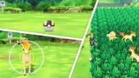 Pokémon - Let's Go: Pokémon fangen - Tipps und Tricks zur Fangmechanik