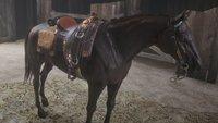 Red Dead Redemption 2: Die besten Pferde kostenlos bekommen - so geht's