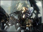 Aliens vs. Predator  - Erste Eindrücke
