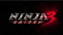 Ninja Gaiden 3 - E3-Trailer präsentiert Ryu Hayabusa wieder voll in Action