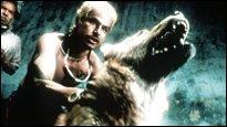 Robins Filmtipp - Amores perros