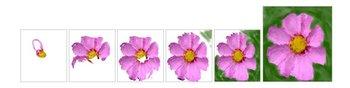 Artweaver kann die Entstehung von Bildern in als Events speichern