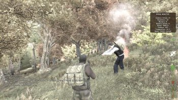 dayz-screenshot_2